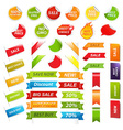 Labels And Web Ribbons Set vector image vector image