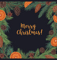 merry christmas card with fir branch border vector image