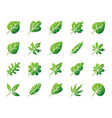 organic leaf simple gradient icons set vector image vector image
