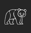 panda bear chalk white icon on black background vector image