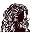 Silhouette of a young lady with luxurious hair vector image vector image