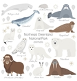 Arctic animal set White polar bear narwhal vector image