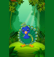 peacock in the clear and green forest vector image