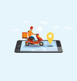 concept online delivery service tracking online vector image
