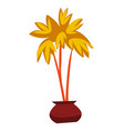 decorative house plant palm in flower pot vector image