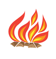 fire with wood vector image