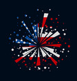 fireworks with usa flag vector image