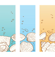 Seashell banner set vector image vector image