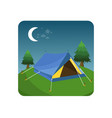 tent in green grass vector image vector image