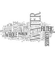 whole house water filter text word cloud concept vector image vector image