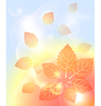 Abstract autumn background with leaves bubbles vector image