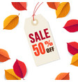 autumn sale 50 off tag template falling bright vector image vector image