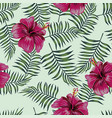 burgundy hibiscus on seamless leaves vector image