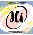 hi hand drawn brush lettering on colorful vector image vector image