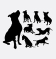 Pitbull bulldog terrier dog animal silhouettes vector image vector image