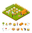 beekeeping apiary farm and elements part isometric vector image