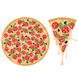 cartoon tasty pizza vector image
