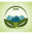 Eco and natural design vector image