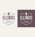 illinois state textured vintage t-shirt and vector image vector image