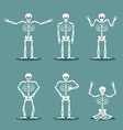 Skeleton set of different poses Expression of dead vector image vector image