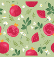 summer pattern with pomegranates flowers vector image