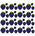 blackberry seamless pattern design vector image