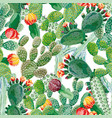 cactus seamless pattern white background vector image
