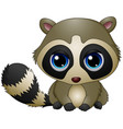 cute baby raccoon sitting vector image