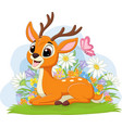 cute deer laying in grass vector image vector image