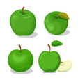 four apples set including cut green vector image