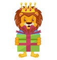 lion with birthday present on white background vector image vector image
