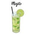 mojito cocktail with lime decorations straw and vector image