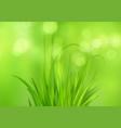 spring bright green background with fresh spring vector image vector image