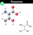 Threonine proteinogenic essential amino acid vector image vector image