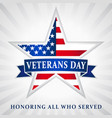 veterans day usa star ribbon vector image