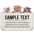 Funny Cartoon Cows with Blank Paper Sign vector image vector image