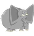 funny elephants cartoon vector image vector image