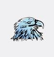 hand-draw bird eagle hawkkitevulture stencil vector image