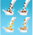 milk and cereals splash realistic 3d vector image vector image