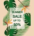 summer sale poster with tropical leaf vector image