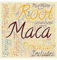 The Magical Benefits of Peruvian Maca text vector image vector image