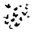 flying butterflies silhouettes vector image