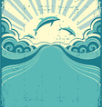 Grunge dolphins poster vector image