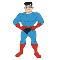 Handsome smiling superhero vector image vector image