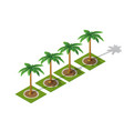 set of isometric 3d palm vector image vector image