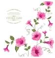 Bindweed flower on paper vector image vector image