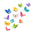 butterflies in flight vector image