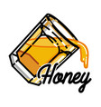 color vintage honey emblem vector image vector image