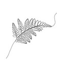 continuous one line drawing fern exotic tropical vector image