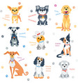 set colour dogs vector image